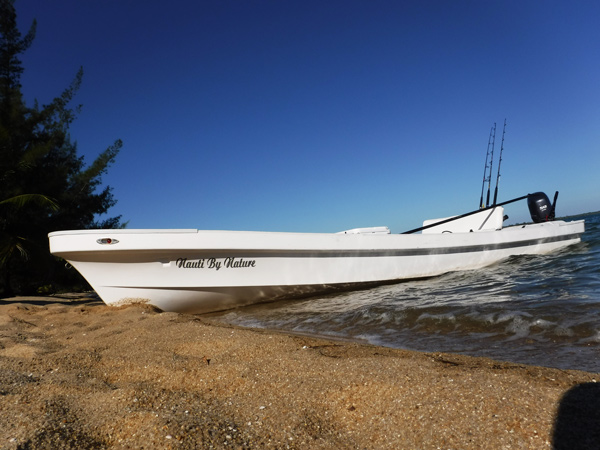 panga boat near beach
