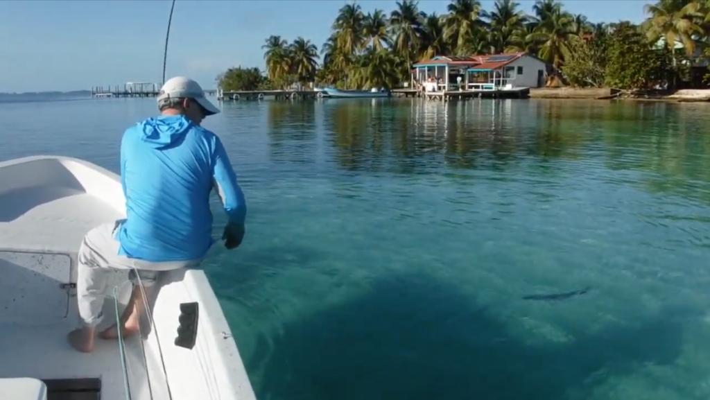 bonefish fly fishing